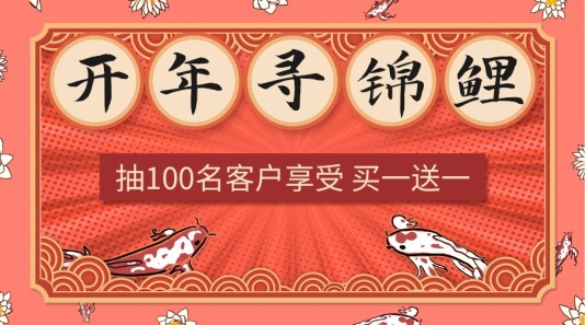 喜庆服饰箱包开年寻锦鲤banner模板